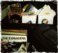 Vinyl Roots 2013
