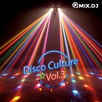 Disco Culture Vol.3