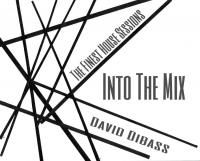 The Finest House Sessions (Into The Mix)