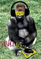Jungle Practice mix 2 - The Original Dj DisOrder