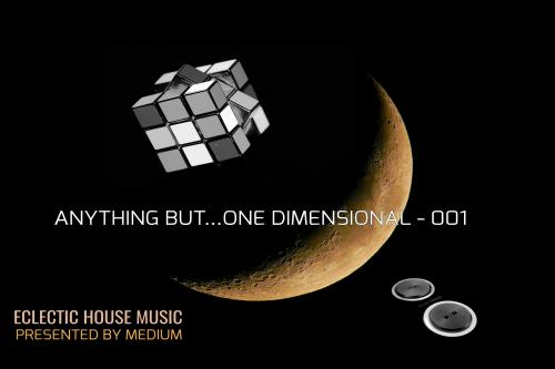 ANYTHING BUT...ONE DIMENSIONAL - 001