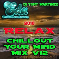 2016 Relax Chillout Your Mind Mix v12