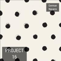 Project 16