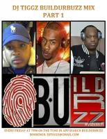 DJ TIGGZ BUILDURBUZZ MIX PART 1