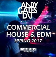 Commercial House & EDM (Spring 2017) Mix