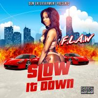 "F.L.A.W ""Slow It Down"""
