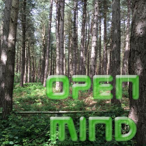 Open Mind 2