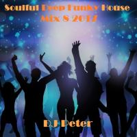 Soulful Deep Funky House Mix 8 2017 - DJ Peter