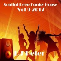 Soulful Deep Funky House Vol 9 2017 - DJ Peter