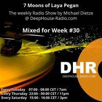 Week #30 // 7 Moons of Laya Pegan @ DHR // by Michael Dietze