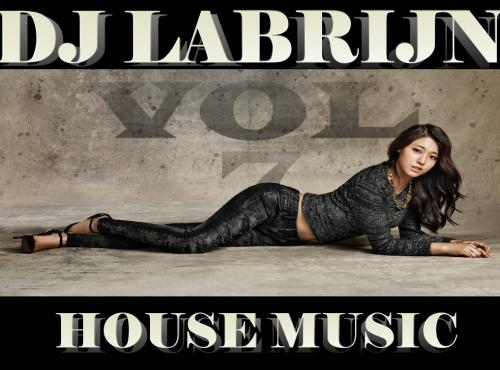 Dj Labrijn - House music vol 7