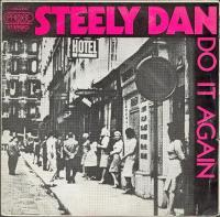 Steely Dan - Do It Again remix