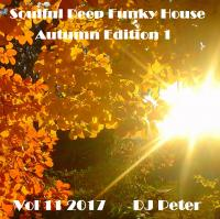 Soulful Deep Funky House Vol 11 2017 - DJ Peter