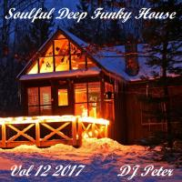 Soulful Deep Funky House Vol 12 2017 - DJ Peter