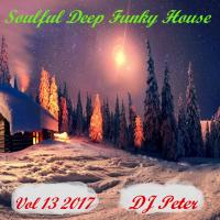 Soulful Deep Funky House Vol 13 2017 - DJ Peter