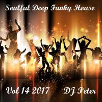Soulful Deep Funky House Vol 14 2017 - DJ Peter