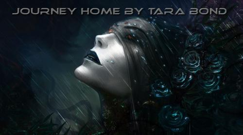 Journey Home (New tracks by Tara Bond) 2018
