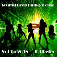 Soulful Deep Funky House Vol 15 2018 - DJ Peter