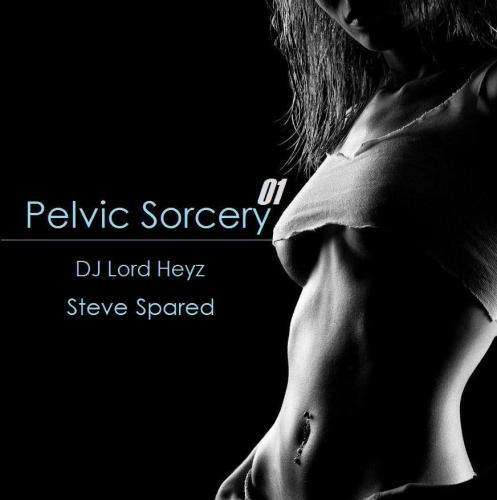Pelvic Sorcery 01 - DJ Lord Heyz  ft. Steve Spared