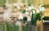 days of spring
