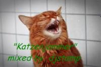 """ Katzenjammer ""  mixed by djstamp"