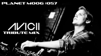 WT156 : Mickael Moog Presents : Planet Moog #057 : A Tribute To Avicii
