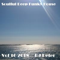 Soulful Deep Funky House Vol 16 2018 - DJ Peter
