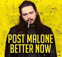 Post Malone - Better Now remix