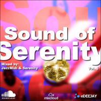 Sound of Serenity 05