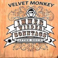 derberber@Velvet_Monkey_liveset_7.7.2019
