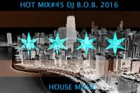 HOT MIX#45 DJ B.O.B. 2016