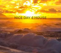 NICE DAY 4 HOUSE