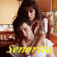 Shawn Mendes feat Camila Cabello - Senorita remix