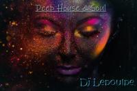 Deep House & Soul ( Serie )
