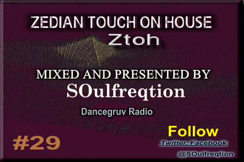 Zedian Touch On House 29