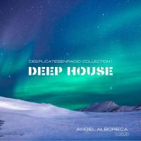 DEEP HOUSE-DeepLicatesenRadio-Collection 1 - Angel Alboreca 01.2020