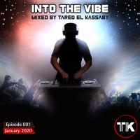 Into The Vibe 001