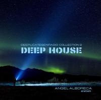 DEEP HOUSE. DeepLicatesenRadio-Collection 2.