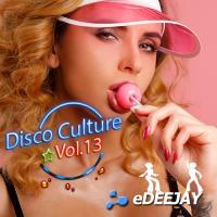 Disco Culture Vol.13