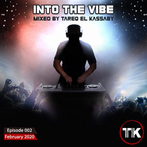 Into The Vibe 002
