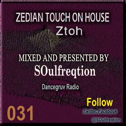 Zedian Touch On House 031