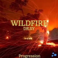WildFire - Dr.sY
